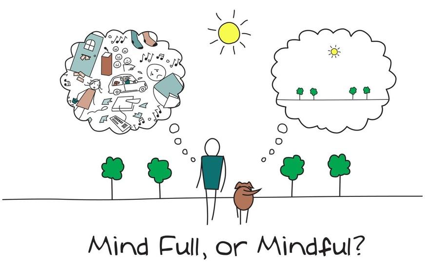 Quer saber o que é Mindfulness ou Atenção Plena?